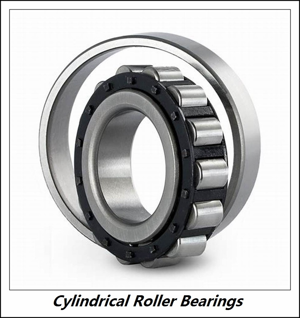 1.375 Inch | 34.925 Millimeter x 2 Inch | 50.8 Millimeter x 1.5 Inch | 38.1 Millimeter  CONSOLIDATED BEARING 95824  Cylindrical Roller Bearings