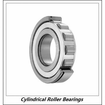 1.378 Inch | 35 Millimeter x 3.15 Inch | 80 Millimeter x 0.827 Inch | 21 Millimeter  CONSOLIDATED BEARING NUP-307  Cylindrical Roller Bearings
